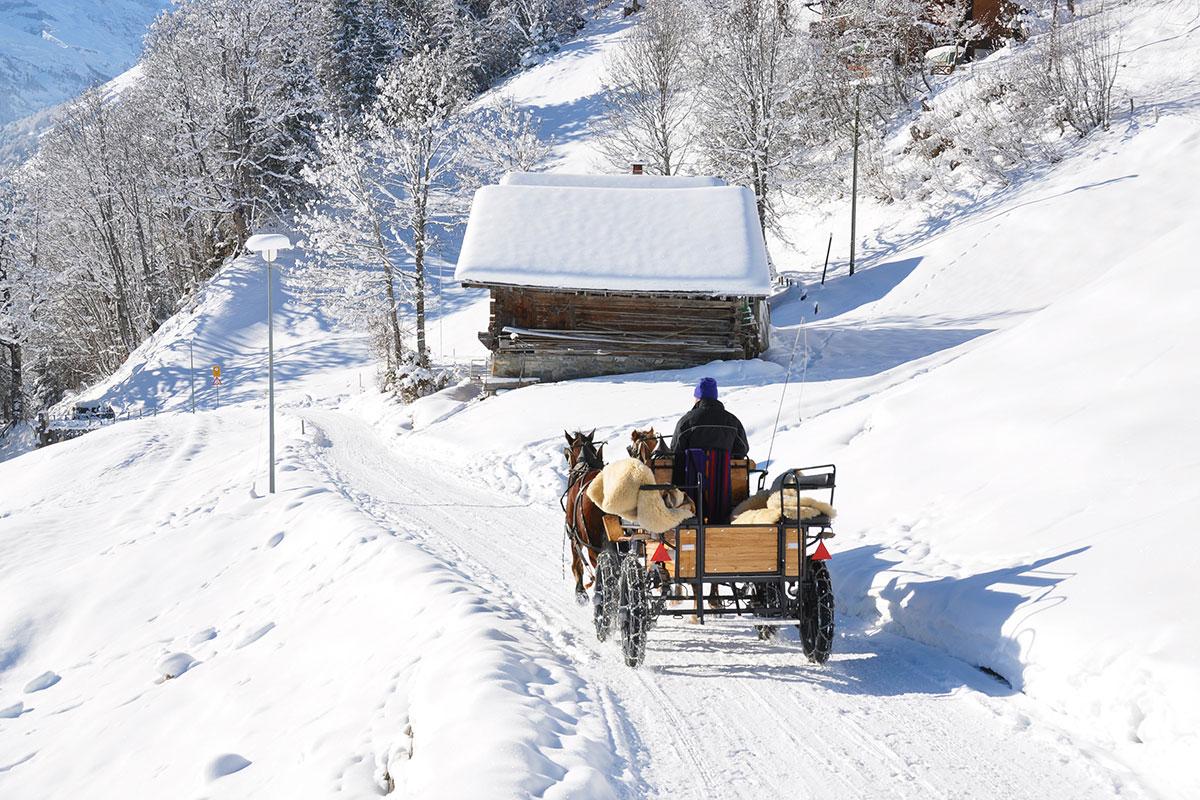 Aparthotel am See, Winterurlaub im Snow Space Salzburg und Ski amadé, Pferdeschlittenfahrt in Flachau